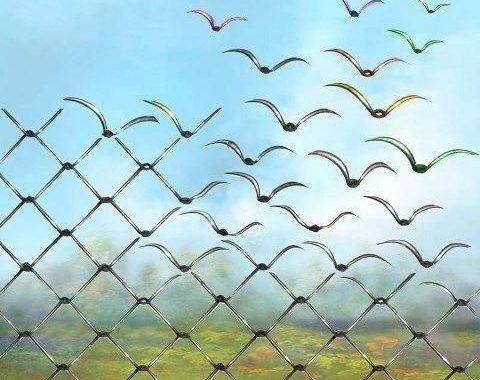 Le carceri sono un focolaio di contagio