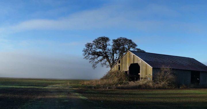 USA: Il fronte rurale
