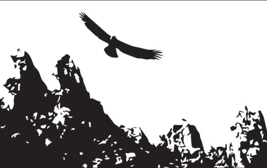 """Trentino: Pieghevole """"Fianco a fianco"""" in solidarietà a Juan"""
